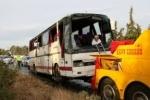 В Петербург вернулись четверо туристов, пострадавших в ДТП в Греции