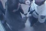 Расстрел охранников в ТЦ Караван в Киеве: появилось видео из комнаты охраны