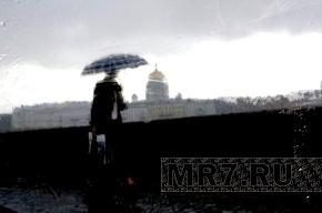 К концу недели в Петербурге ожидаются дожди и похолодание