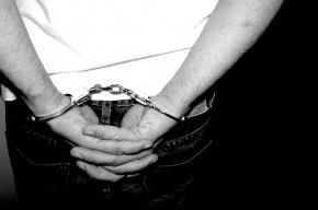 Сотрудники ФСО, похитившие человека в Петербурге, получили 9 лет на троих