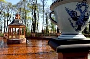 Русский музей: Вход в Летний сад не будет платным