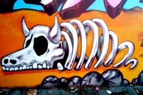 На Петроградке граффитисты раскрасят 32 брандмауэра, объявлен конкурс