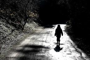 Пятилетнего мальчика из Петербурга забыли в лесу на Урале