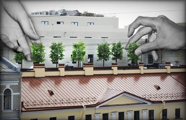 В Петербурге дому XVIII века наставили «рога»-деревья