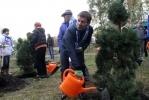 Посадка деревьев в Удельном парке, Зенит, 12 октября 2012: Фоторепортаж