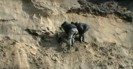 Фоторепортаж: «Туша мамонта»
