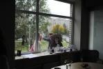 """Центр современного искусства """"Факел"""" в Купчино: Фоторепортаж"""