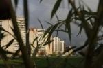 Купчино - столица мира: Фоторепортаж