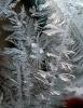 Фоторепортаж: «Зима мороз»