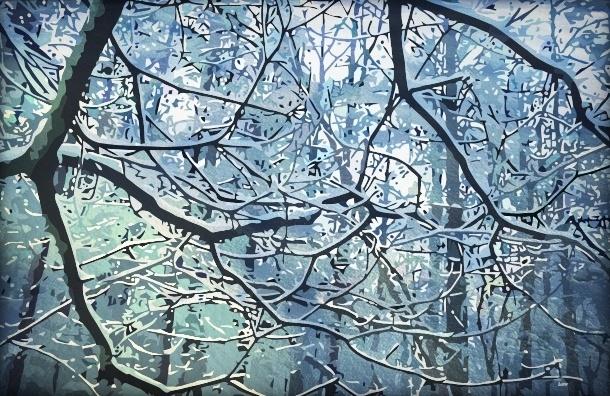 Как петербуржцы справились с первым снегопадом
