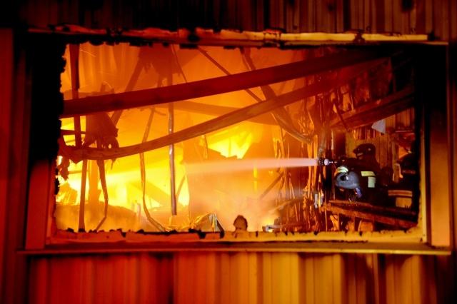Пожар в Шушарах: Фото