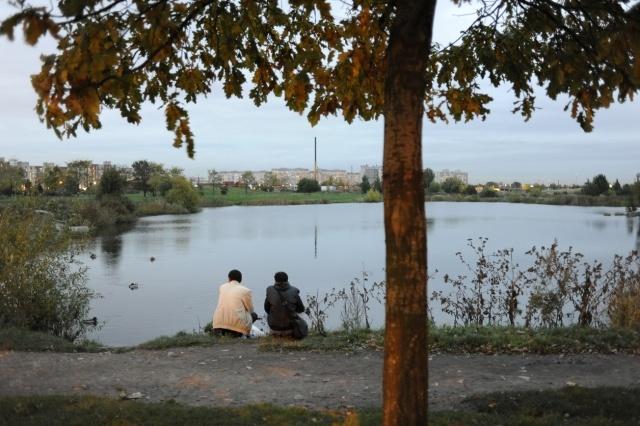 Безымянный парк во Фрунзенском районе: Фото