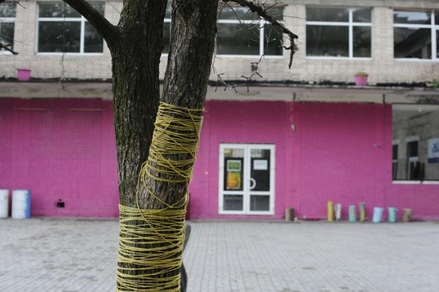 """Центр современного искусства """"Факел"""" в Купчино: Фото"""