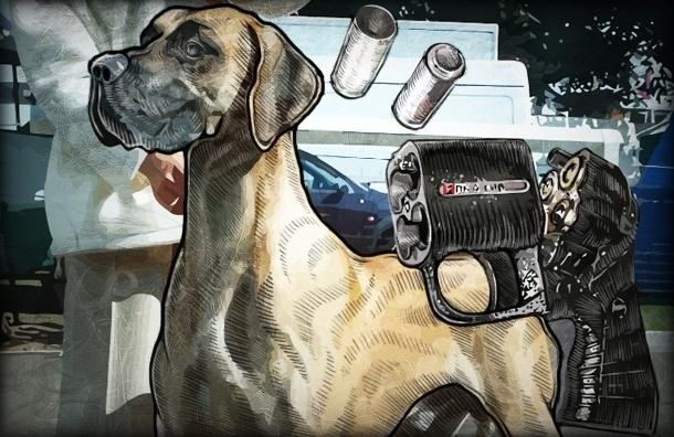 Можно ли стрелять в собаку в целях самозащиты