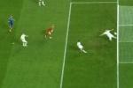Россия – Португалия - отборочный матч ЧМ 2014: составы команд, трансляция