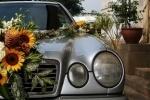 Журналистка, избитая одним из участников дагестанской свадьбы, обратилась в полицию