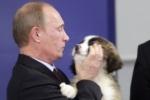 Владимир Путин в Санкт-Петербурге отметит юбилей в кругу близких