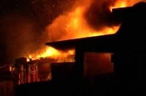 Семь гусей спасли людей от пожара, но сами погибли