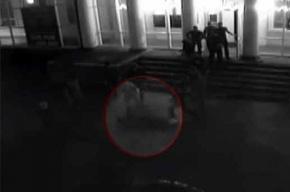 Боксер убил охранника: Валерий Третьяков пришел в полицию с повинной