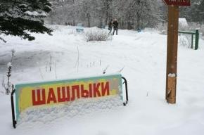 Небольшой снежок в Петербурге пойдет в конце октября