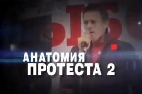 Моcгордумa просит Генпрокурaтуру проверить факты, изложенные в «Анатомии протеста 2»