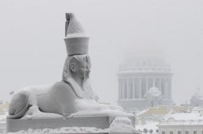 Петербург вошел в рейтинг самых вымирающих городов