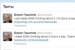 Твиттер Грызлова рекламирует легкий заработок на дому