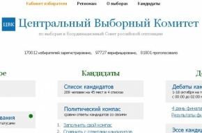 Депутат Луговой попросил Бастрыкина проверить выборы оппозиции