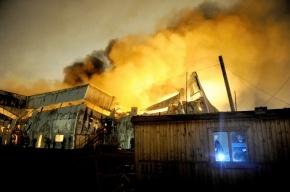 Пожар в Шушарах – страшное пламя тушили по самому высокому разряду (смотреть)