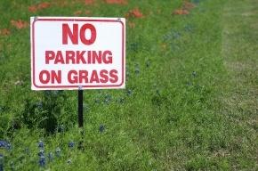 Депутаты согласились, что за парковку на газоне достаточно предупреждения