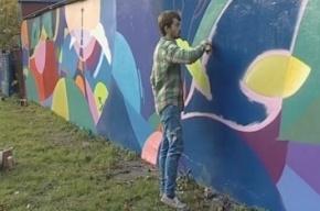 На стене дома в Петербурге появилось 200-метровое граффити