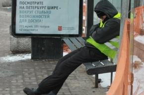 Петербургские остановки предлагают оснастить транспортными QR-кодами