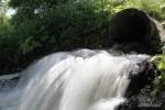 Стоки вод в Неву, Гринпис, чиновники: Фоторепортаж