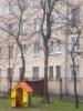 «Деревья-угрозы» в Кировском районе: Фоторепортаж