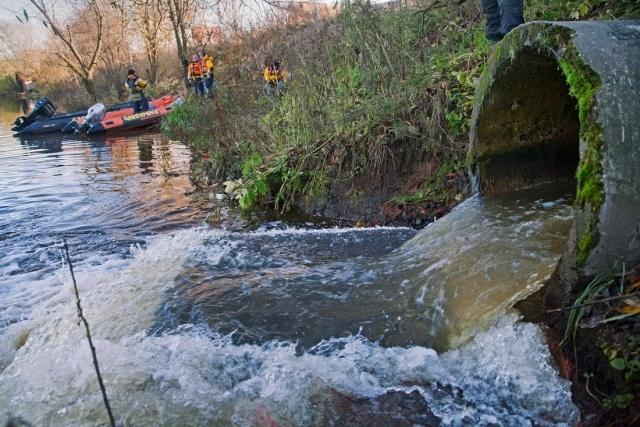 Стоки вод в Неву, Гринпис, чиновники: Фото