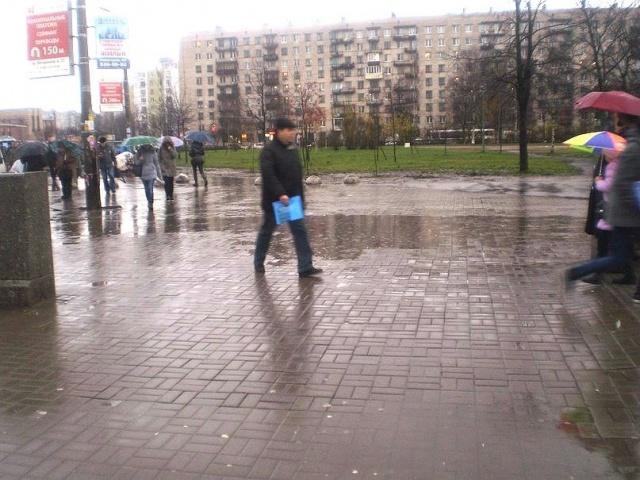 Лужа, проспект Ветеранов, Красивый Петербург: Фото