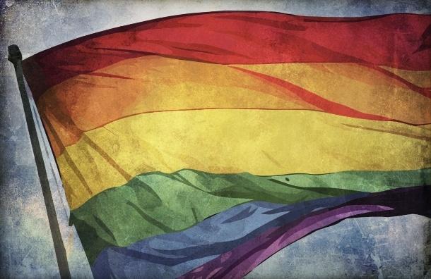 Госдума рассмотрит закон о запрете гей-пропаганды по всей России 19 декабря