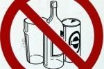 Пьяным единороссам партия запретила садиться за руль