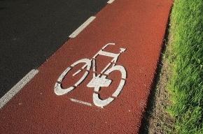Горожан просят предложить свои маршруты велодорожек в Петербурге