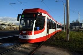 В Петербурге появится 30-метровый челночный трамвай с электронным кондуктором