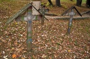 В Петербурге мужчина раскопал могилу ради металлической ручки гроба