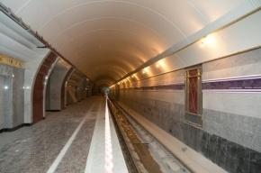 До «Бухарестской» и «Международной» первые поезда поедут 4 декабря