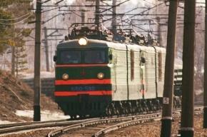 Петербуржцев высадили из поезда в Воронеже из-за бомбы