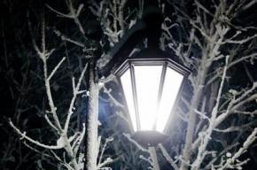 Зимой фонари в Петербурге будут гореть на полчаса дольше каждый день