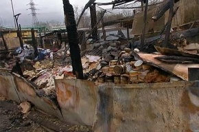 МЧС назвало причину пожара в приюте для животных в Москве