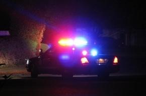 В США полицейский вертолет упал прямо на улице, двое погибли