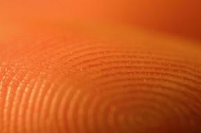 Отпечатки пальцев у мигрантов возьмут принудительно