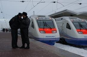 Снегопад в Петербурге задержал поезда «Аллегро»
