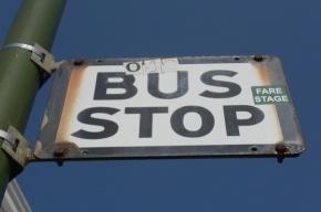 Автобусы в Петербурге будут ходить чаще