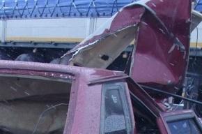По факту ДТП в Омской области, где погибли 7 человек, возбудили дело